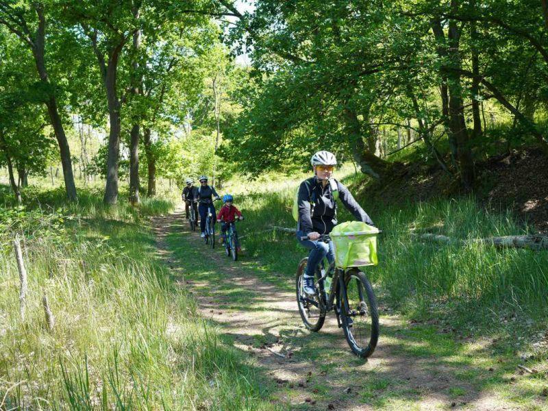 Familie bei Radtour durch Wald und Wiese