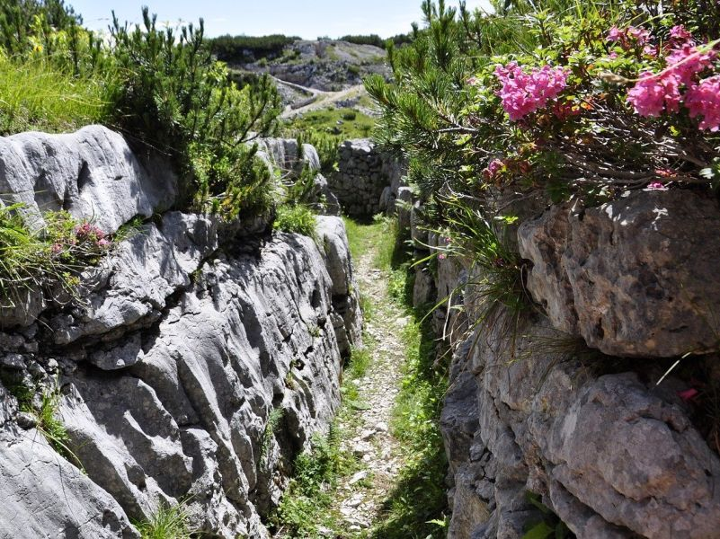 WW 1 drench high in the mountains above the Soca valley on a sunny summer day, with alpine flowers and shrubs covering the stone structures. - here history interpretation will work only offline