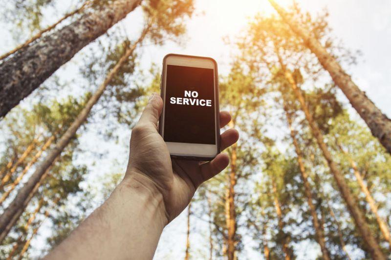 """Hand, die im Wald ein Smartphone in die Höhe hält, auf dem der Hinweis """"No service"""" angezeigt wird"""