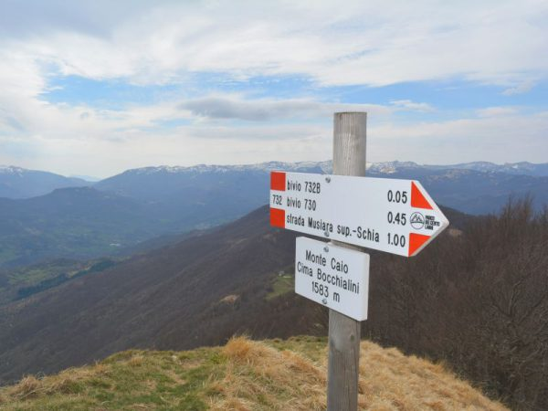 Talking signs – informative and accessible